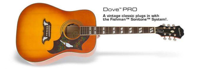 Dove PRO Guitar